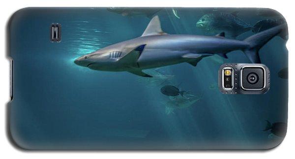 Shark Attack Galaxy S5 Case