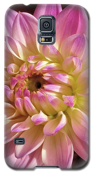 Shades Of Pink Galaxy S5 Case