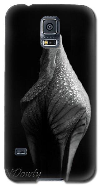 Shadow On Siberian Iris Galaxy S5 Case