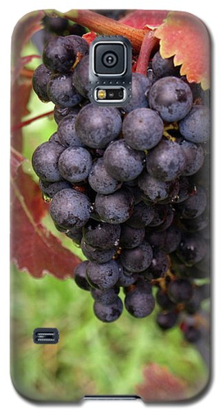 Shalestone - 1 Galaxy S5 Case