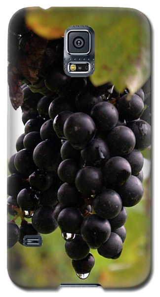 Shalestone - 10 Galaxy S5 Case