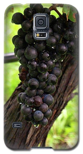 Shalestone - 11 Galaxy S5 Case