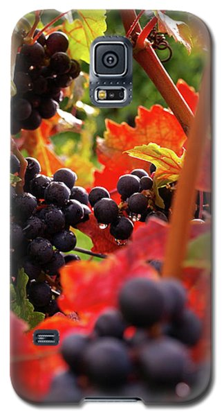 Shalestone - 2 Galaxy S5 Case