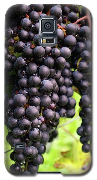 Shalestone - 7 Galaxy S5 Case