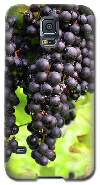 Shalestone - 8 Galaxy S5 Case