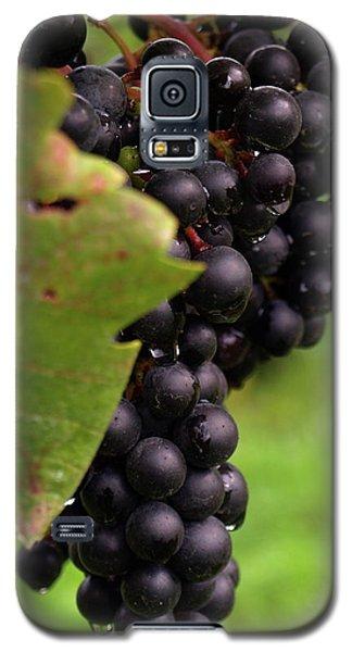 Shalestone - 9 Galaxy S5 Case