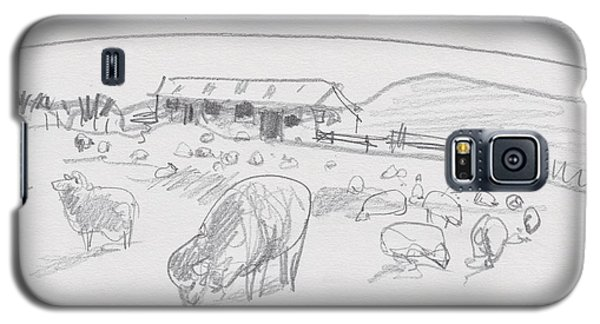 Sheep On Chatham Island, New Zealand Galaxy S5 Case