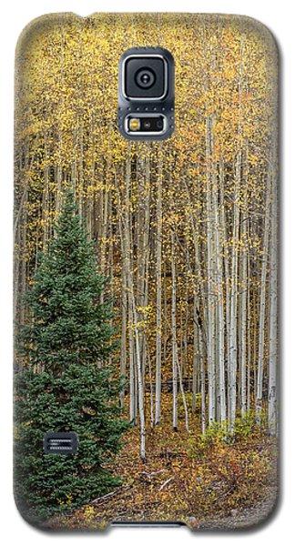 Shimmer Galaxy S5 Case