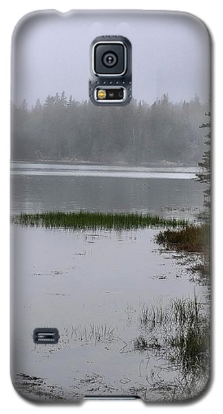 Ship Harbor Nature Trail, Acadia National Park Galaxy S5 Case
