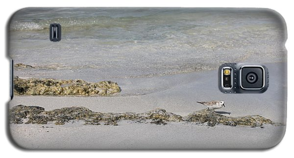 Shorebird Galaxy S5 Case