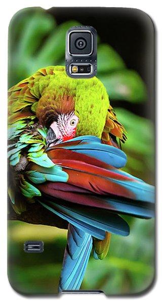 Shy Parrot Galaxy S5 Case