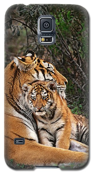 Siberian Tiger Mother And Cub Endangered Species Wildlife Rescue Galaxy S5 Case