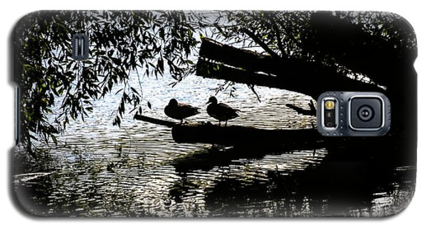 Silhouette Ducks #h9 Galaxy S5 Case