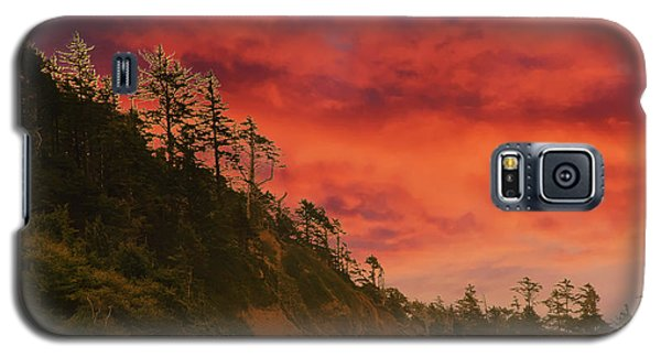 Silhouette Of Conifer Against  Seacoast  Galaxy S5 Case