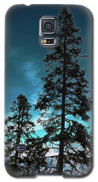 Silhouette Of Tall Conifers In Autumn Galaxy S5 Case