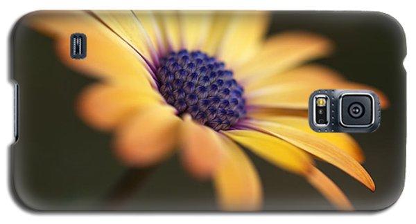 Simply Beautiful In Yellow To Orange  Galaxy S5 Case