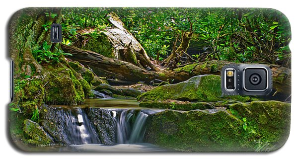 Sims Creek Waterfall Galaxy S5 Case