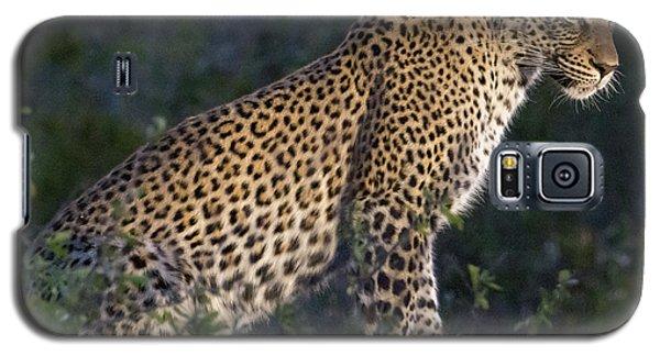 Sitting Leopard Galaxy S5 Case