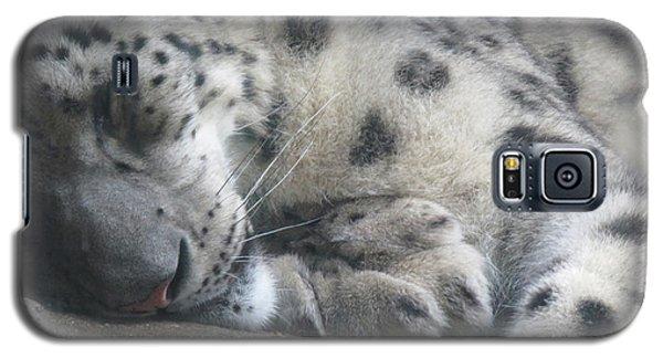 Sleeping Cheetah Galaxy S5 Case