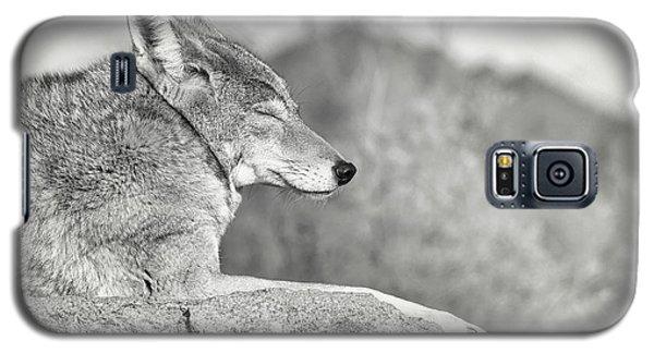 Sleepy Coyote Galaxy S5 Case