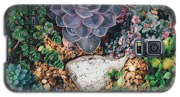 Small Succulent Garden Galaxy S5 Case