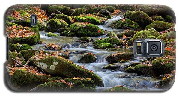 Smokey Mountain Cascades Galaxy S5 Case