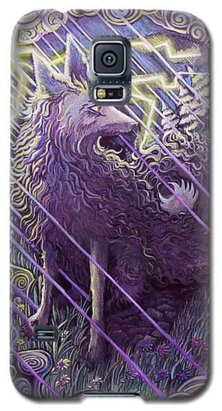 Smokey Rain Galaxy S5 Case