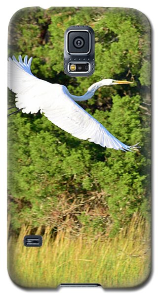 Snow Egret Soaring Above The Marsh Galaxy S5 Case