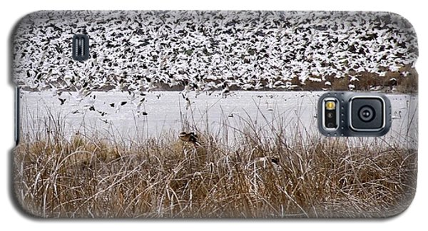 Snow Geese Migration Galaxy S5 Case