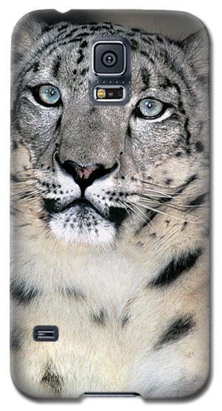 Snow Leopard Portrait Endangered Species Wildlife Rescue Galaxy S5 Case