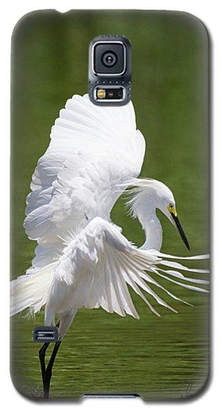 Snowy Dance Galaxy S5 Case