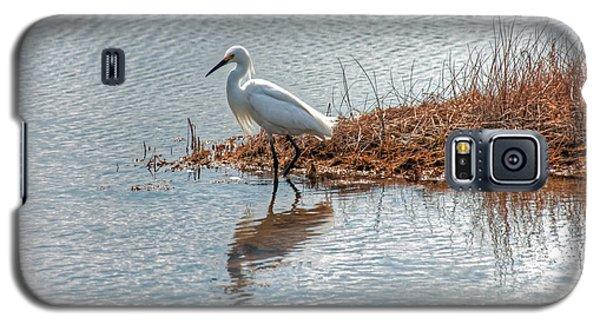 Snowy Egret Hunting A Salt Marsh Galaxy S5 Case