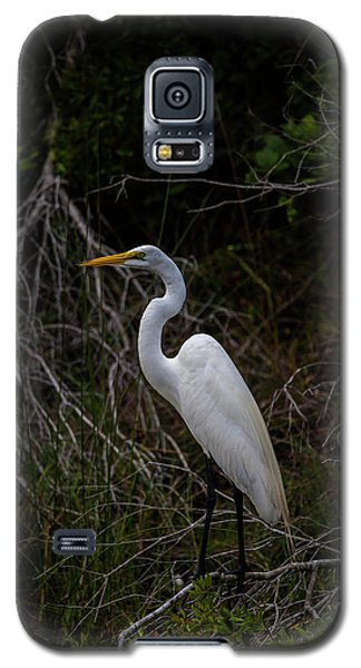 Snowy Egret On A Hot Summer Day Galaxy S5 Case