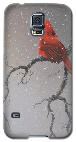 Snowy Perch Galaxy S5 Case