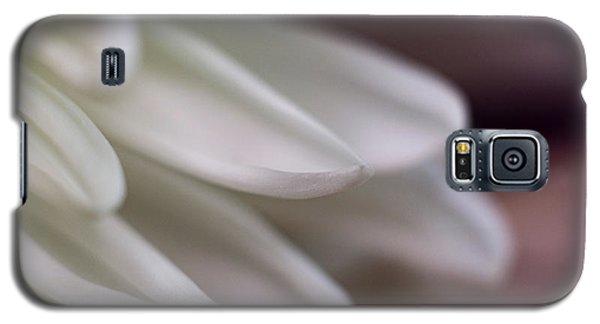 Soft White Petals-1 Galaxy S5 Case
