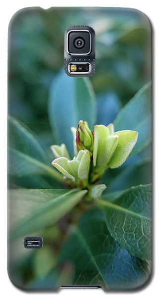 Softly Blooming Galaxy S5 Case