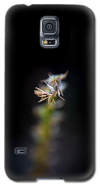 Somewhere In The Garden Galaxy S5 Case