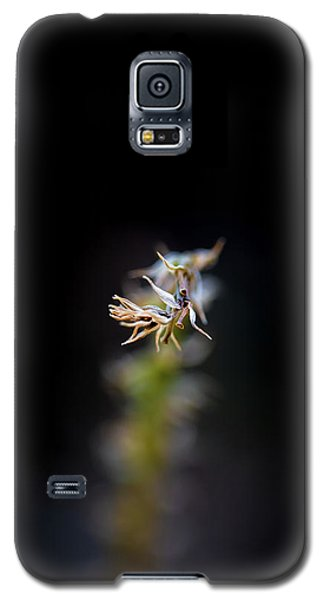 Somewhere In The Garden Galaxy S5 Case