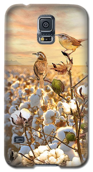 Song Of The Wren Galaxy S5 Case
