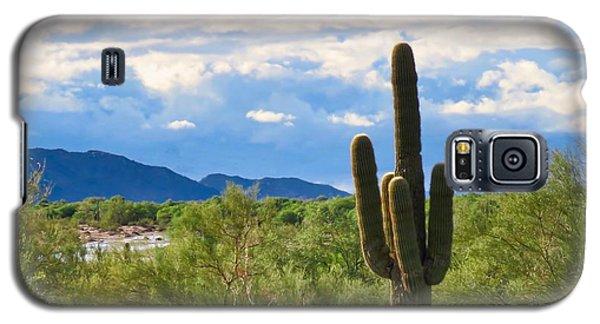 Sonoran Desert Landscape Post-monsoon Galaxy S5 Case