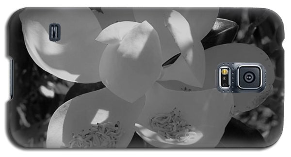 Southern Magnolia In Black And White Galaxy S5 Case