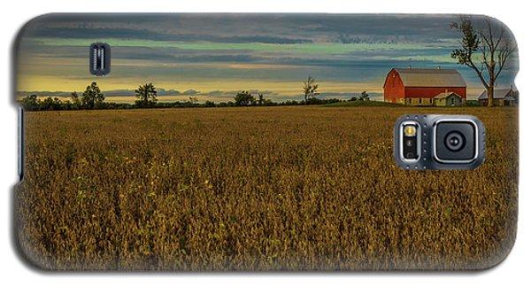 Soybean Sunset Galaxy S5 Case