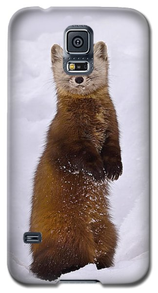 Space Invader Galaxy S5 Case