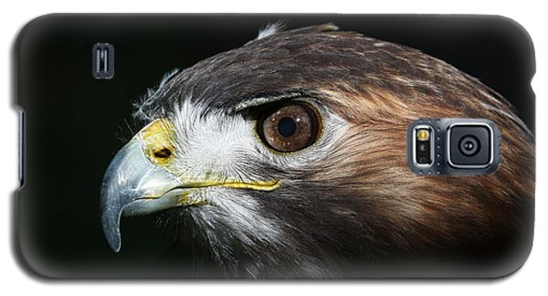 Sparkle In The Eye - Red-tailed Hawk Galaxy S5 Case