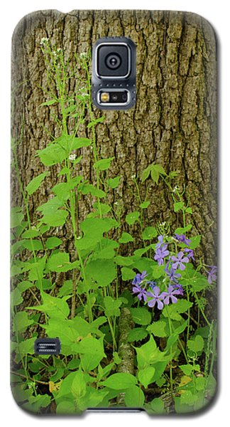 Splash Of Purple Galaxy S5 Case