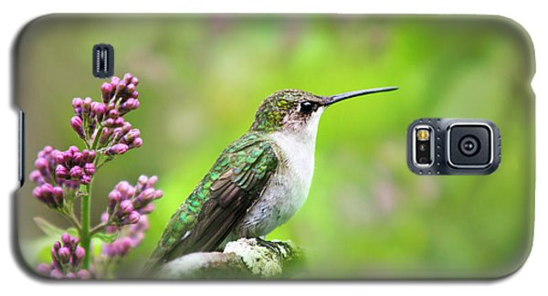 Spring Beauty Ruby Throat Hummingbird Galaxy S5 Case