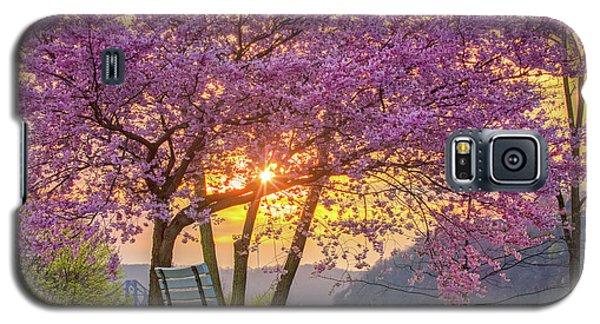 Spring Bench In Beaver 2 Galaxy S5 Case