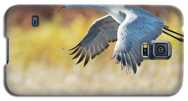 Squawking All The Way Galaxy S5 Case