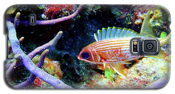 Squirrel Fish Galaxy S5 Case