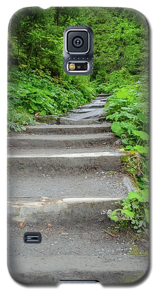 Stairs To The Woods Galaxy S5 Case